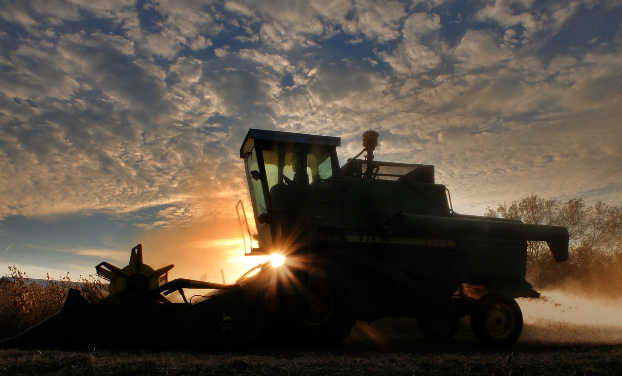 Малые и средние украинские аграрии могут потерять до 9 млрд гривен